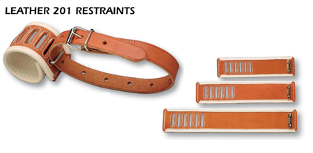 Leather 201 Restraints Options